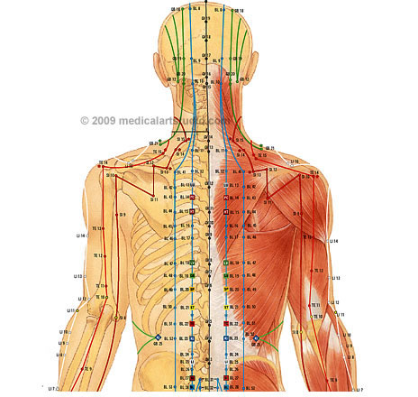 acupuncture-tipperary